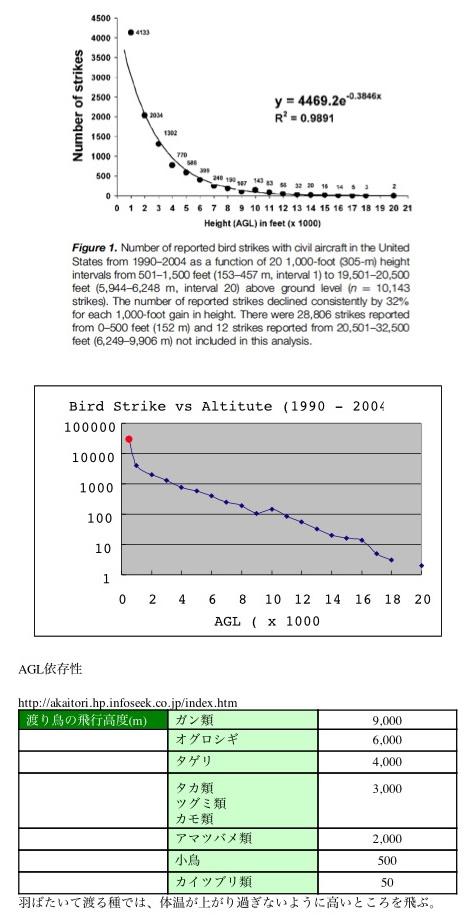 鳥衝突グラフ1